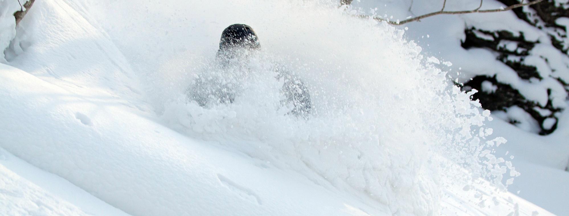 Cat Skiing Faceshot