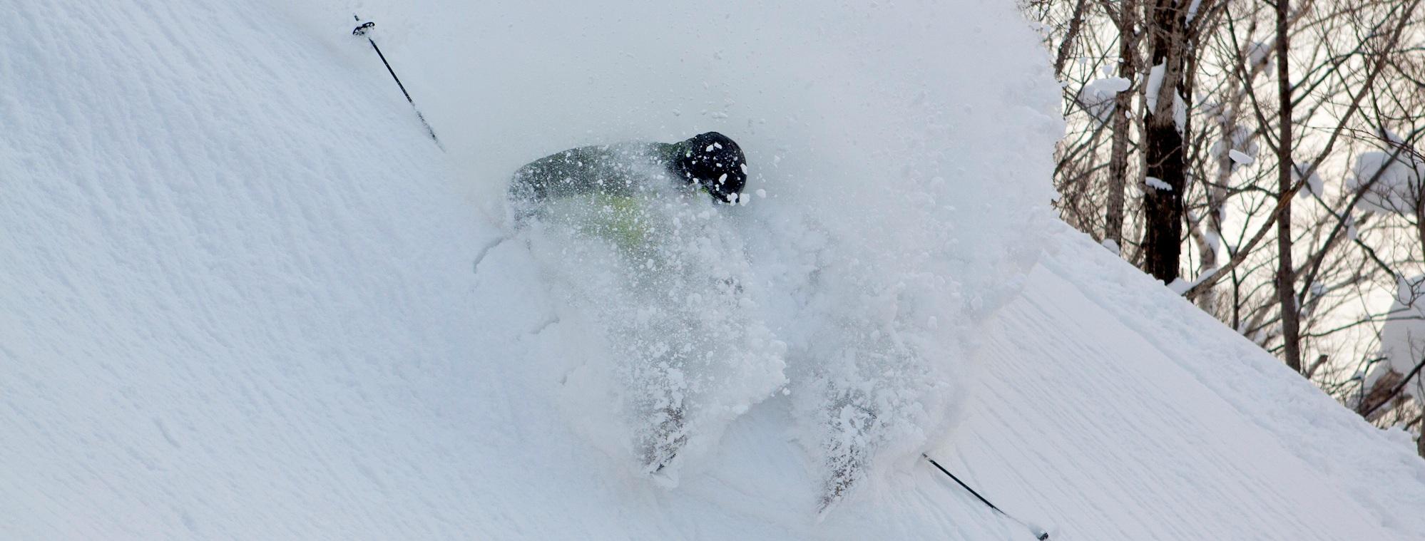 Cat Skiing Pow